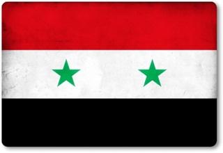 منظمات مجتمع مدني من 13 دولة تطالب الكونغرس الأمريكي والبرلمان الفرنسي بعدم اقرار العدوان على سورية